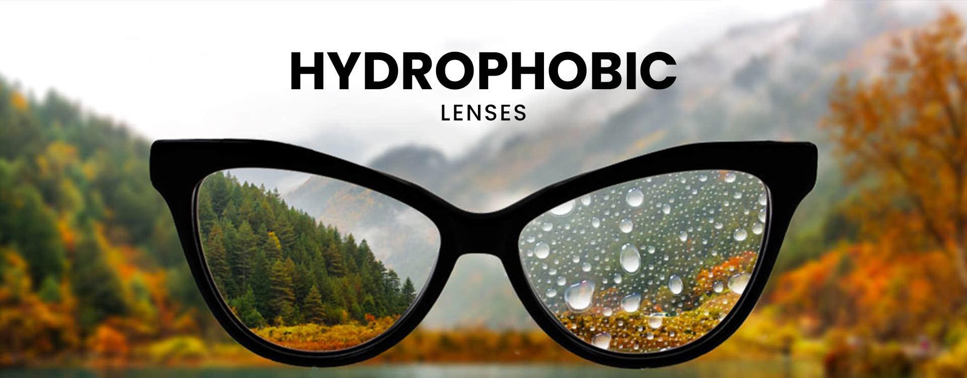 Hydrophobic Glasses
