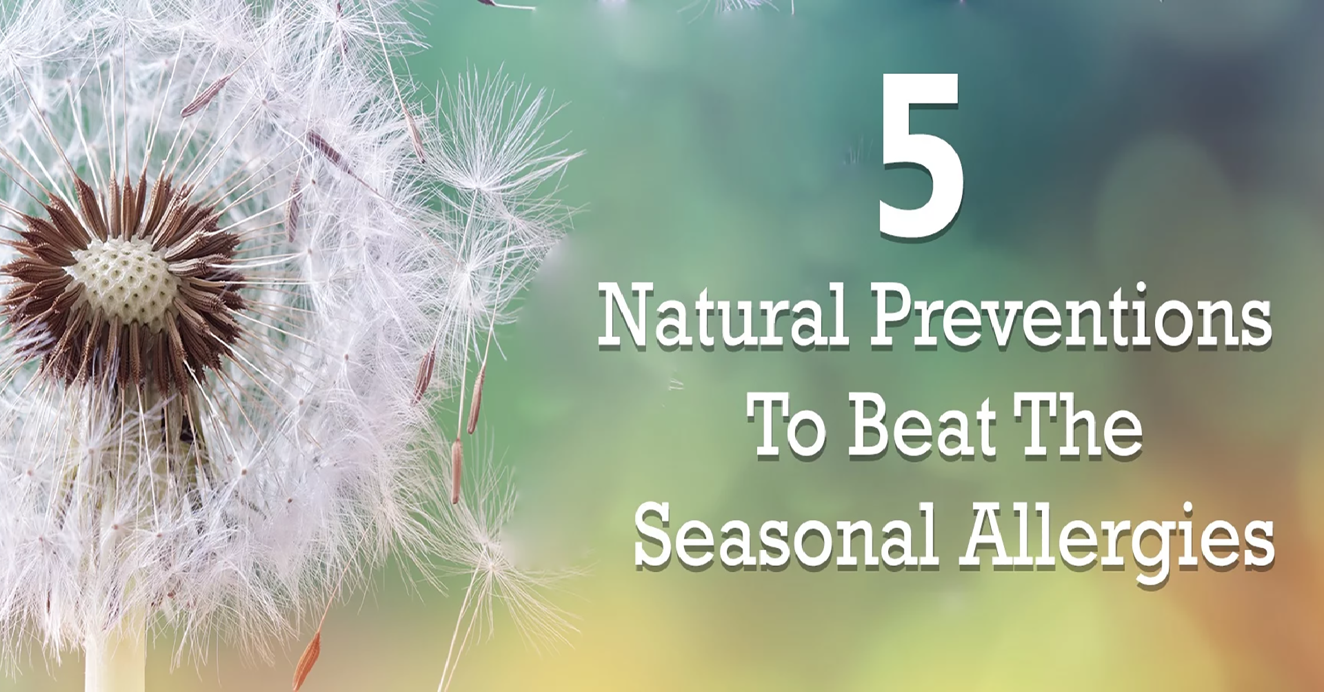 15) 5 NATURAL PREVENTION TO BEAT THE SEASONAL ALLERGIES