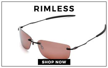 Rimless Tinted Frame