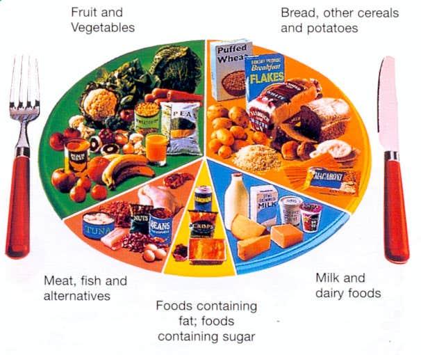 Daily Dietary Plan