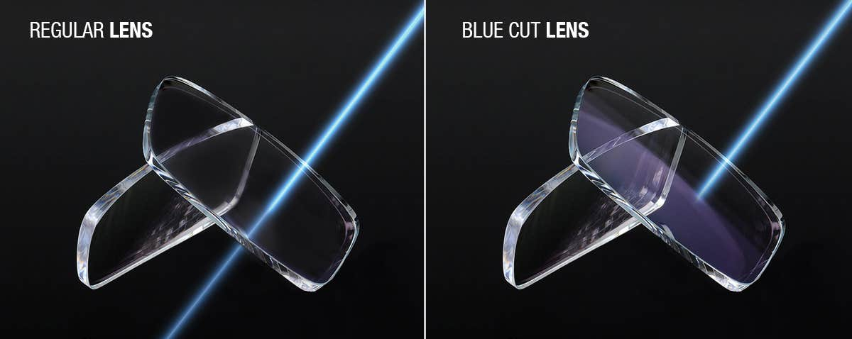 Regular vs Blue Cut Lenses